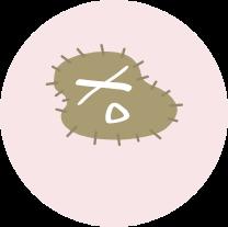 virus04